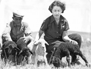 Concha Ortiz y Pino de Kleven and sheepherder with Caracul lambs at Jose Ortiz y Pino Ranch, Galisteo, 1939. - New Mexico State Tourist Bureau, Courtesy Palace of the Governors Photo Archives (NMHM/DCA), #59021